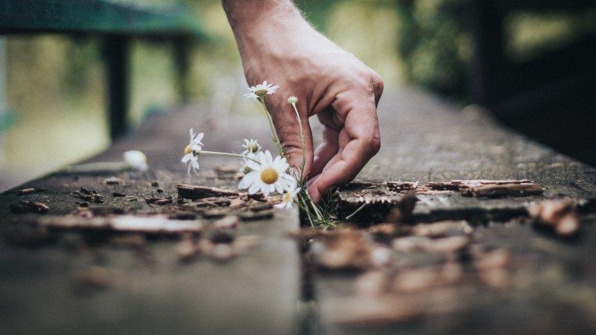 Self-Care: Key to Rejuvenation andEndurance